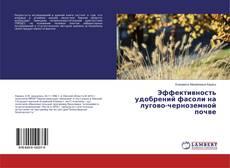 Buchcover von Эффективность удобрений фасоли на лугово-черноземной почве