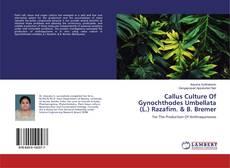 Callus Culture Of Gynochthodes Umbellata (L.) Razafim. & B. Bremer kitap kapağı