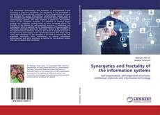 Bookcover of Synergetics and fractality of the information systems