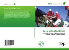 Bookcover of David Little (Tight End)