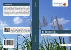 Bookcover of El ca?averal