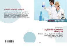 Обложка Glycoside Hydrolase Family 46
