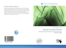 Bookcover of Dorsal Column Nuclei