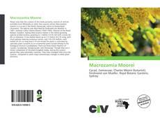 Couverture de Macrozamia Moorei