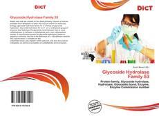 Buchcover von Glycoside Hydrolase Family 53