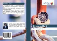Bookcover of Direzione Nord