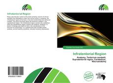 Bookcover of Infratentorial Region