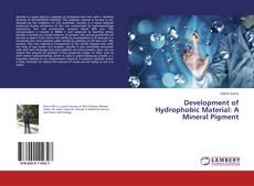 Couverture de Development of Hydrophobic Material: A Mineral Pigment