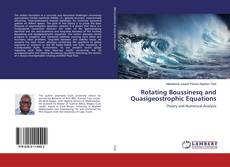 Borítókép a  Rotating Boussinesq and Quasigeostrophic Equations - hoz