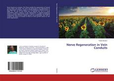 Couverture de Nerve Regeneration in Vein Conduits