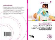 Buchcover von Enteropeptidase