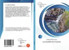 Buchcover von La colère du fleuve