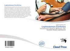 Copertina di Lophostemon Confertus