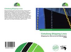 Bookcover of Cokaliong Shipping Lines