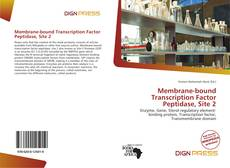 Copertina di Membrane-bound Transcription Factor Peptidase, Site 2