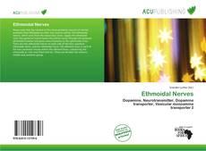 Bookcover of Ethmoidal Nerves