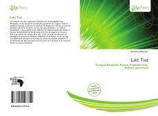 Lac Tuz kitap kapağı