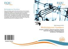 Обложка Methylglyoxal Synthase