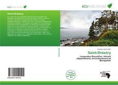 Bookcover of Saint-Drézéry