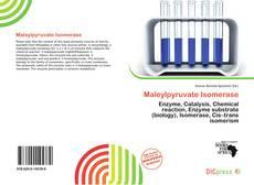 Обложка Maleylpyruvate Isomerase