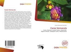 Carex Vernacula kitap kapağı