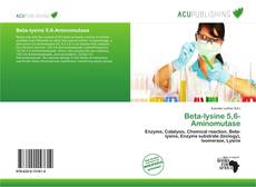 Bookcover of Beta-lysine 5,6-Aminomutase
