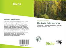 Bookcover of Chylismia Heterochroma