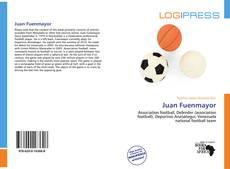 Bookcover of Juan Fuenmayor