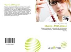 Borítókép a  Glycine—tRNA Ligase - hoz