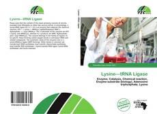 Borítókép a  Lysine—tRNA Ligase - hoz