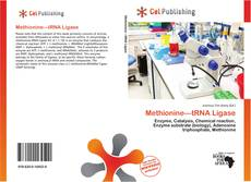 Bookcover of Methionine—tRNA Ligase