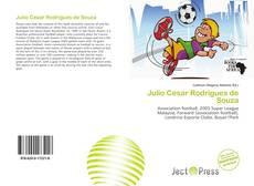 Couverture de Julio Cesar Rodrigues de Souza