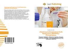 Bookcover of (Hydroxymethylglutaryl-CoA Reductase (NADPH))-Phosphatase
