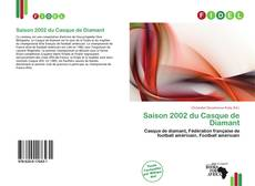Bookcover of Saison 2002 du Casque de Diamant