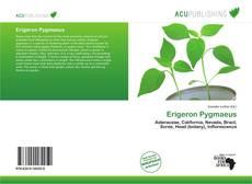 Bookcover of Erigeron Pygmaeus