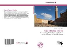 Bookcover of Castelfranco Emilia