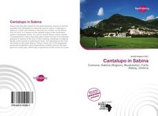 Copertina di Cantalupo in Sabina
