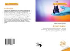 Portada del libro de Keratinase