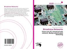 Bookcover of Broadview Networks