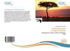 Buchcover von Lithophragma Campanulatum