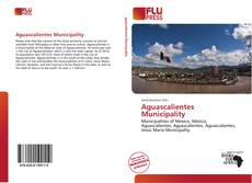 Bookcover of Aguascalientes Municipality