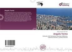 Bookcover of Angolo Terme