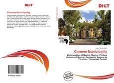 Portada del libro de Carmen Municipality