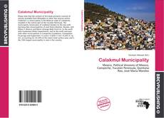 Bookcover of Calakmul Municipality