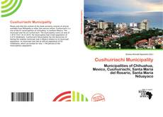 Bookcover of Cusihuiriachi Municipality