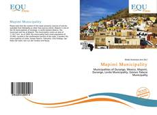 Bookcover of Mapimí Municipality