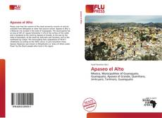 Bookcover of Apaseo el Alto
