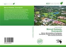 Bookcover of Manuel Doblado, Guanajuato
