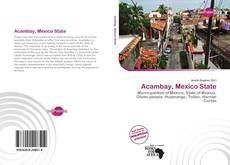 Bookcover of Acambay, Mexico State