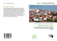 Bookcover of Almoloya de Juárez